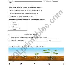 Quiz about plants - ESL worksheet by Catalina Yulieth [ 1169 x 826 Pixel ]