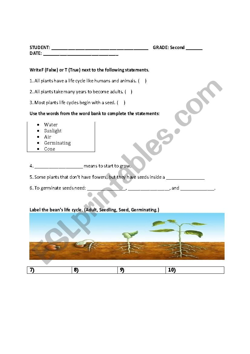 hight resolution of Quiz about plants - ESL worksheet by Catalina Yulieth