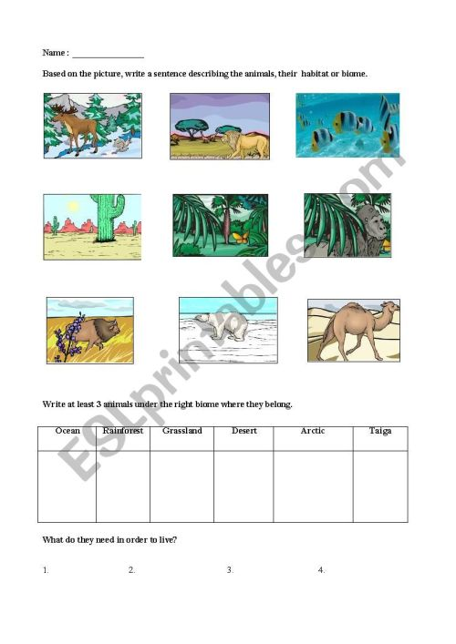 small resolution of Biomes - ESL worksheet by lorenzojoezel@gmail.com