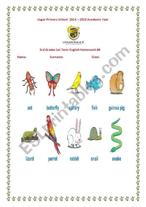 small resolution of animals - ESL worksheet by gulbahart