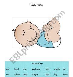 body parts label the baby esl worksheet jpg 826x1169 eyes body part label [ 826 x 1169 Pixel ]