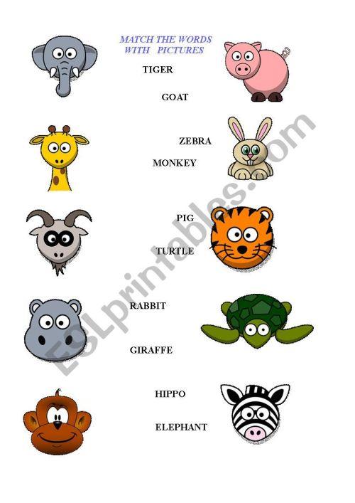 small resolution of Animals worksheet - kids - ESL worksheet by Blanc1984