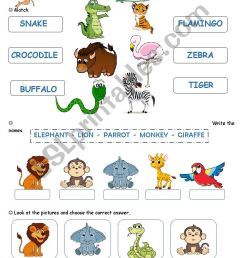 at the zoo - ESL worksheet by cagro [ 1400 x 850 Pixel ]