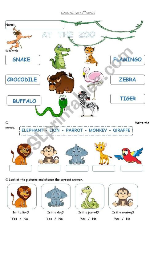 small resolution of at the zoo - ESL worksheet by cagro
