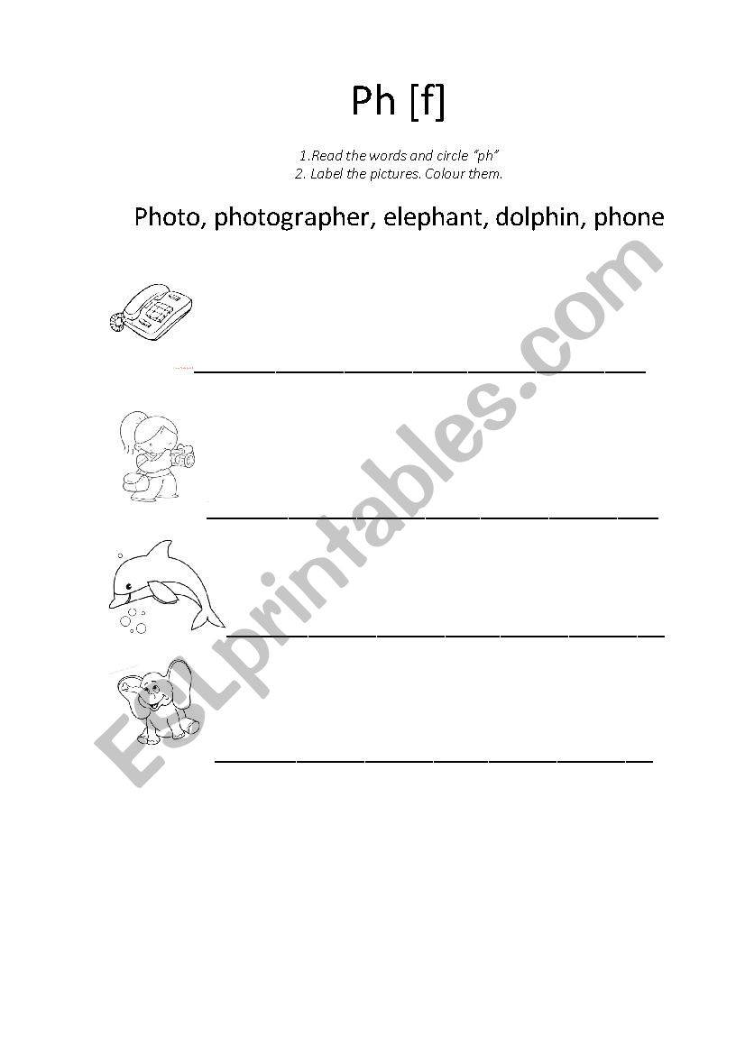 Ph And Poh Continued Worksheet Answer Key → Waltery