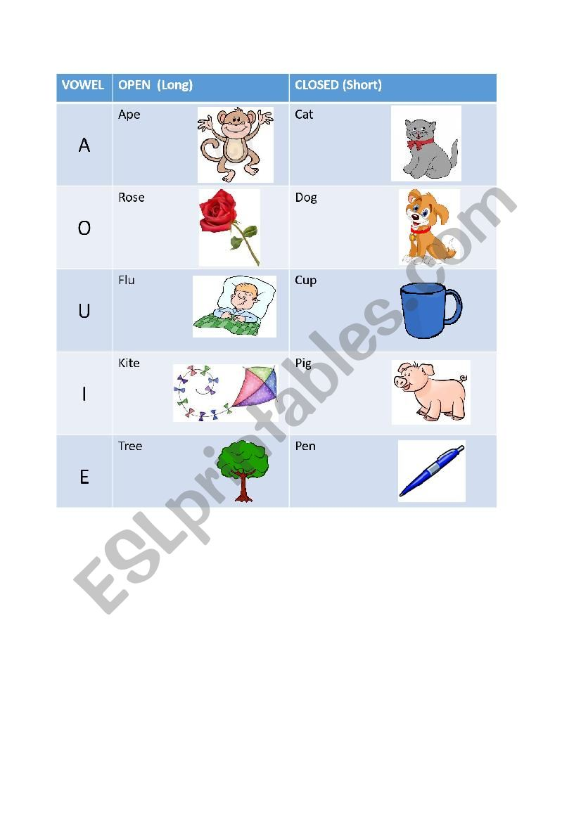 medium resolution of Open and Closed Syllables Cheat Sheet/ Long and Short Vowels Table - ESL  worksheet by ox-eye-daisy