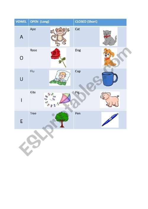 small resolution of Open and Closed Syllables Cheat Sheet/ Long and Short Vowels Table - ESL  worksheet by ox-eye-daisy