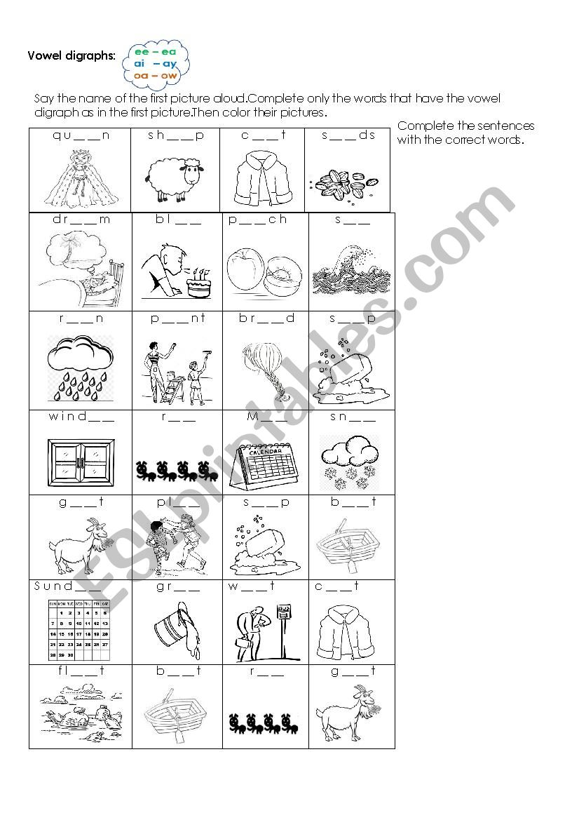 medium resolution of Vowel digraphs listening exercise - ee-ea /ai-ay/oa-ow - ESL worksheet by  Laurita02