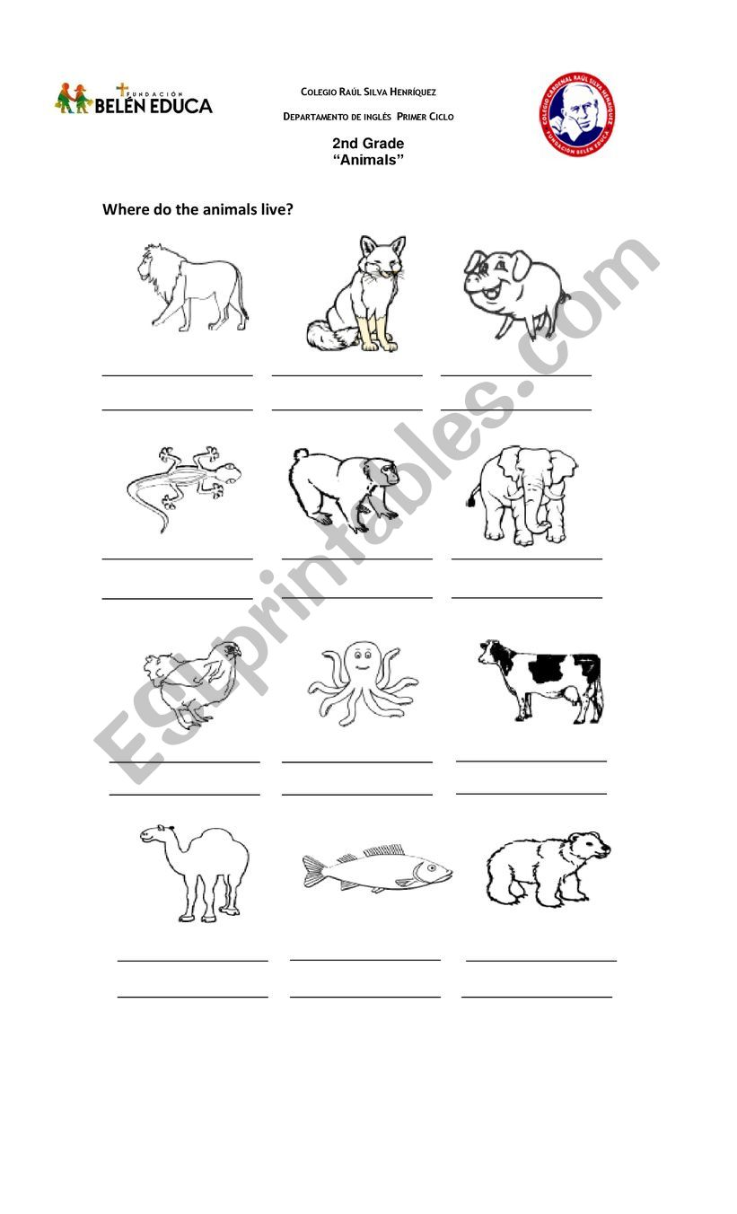 hight resolution of animals habitat - ESL worksheet by lilycaro