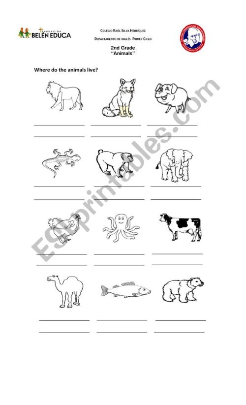 small resolution of animals habitat - ESL worksheet by lilycaro