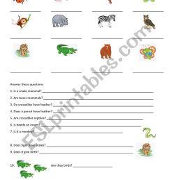 ANIMALS grade 2 - ESL worksheet by geik1980 [ 1161 x 821 Pixel ]