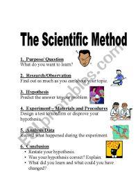 The Scientific Method - ESL worksheet by SCruzinSC