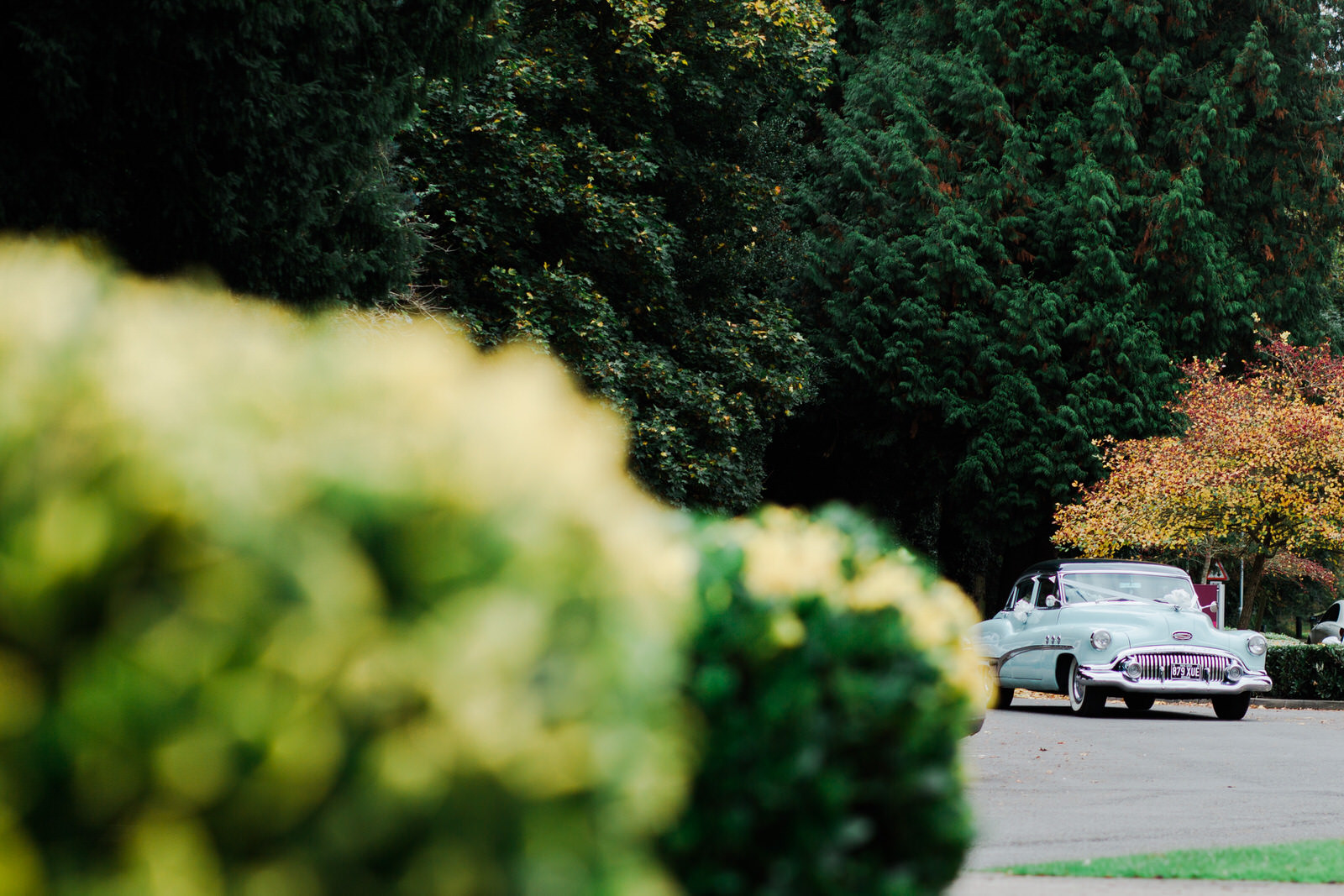 30Relaxed Forest Wedding at Brandon Hall
