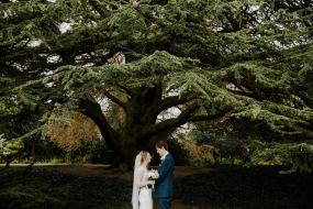 bride and groom under tree in jephson gardens Natural Documentary style Wedding photography Warwickshire
