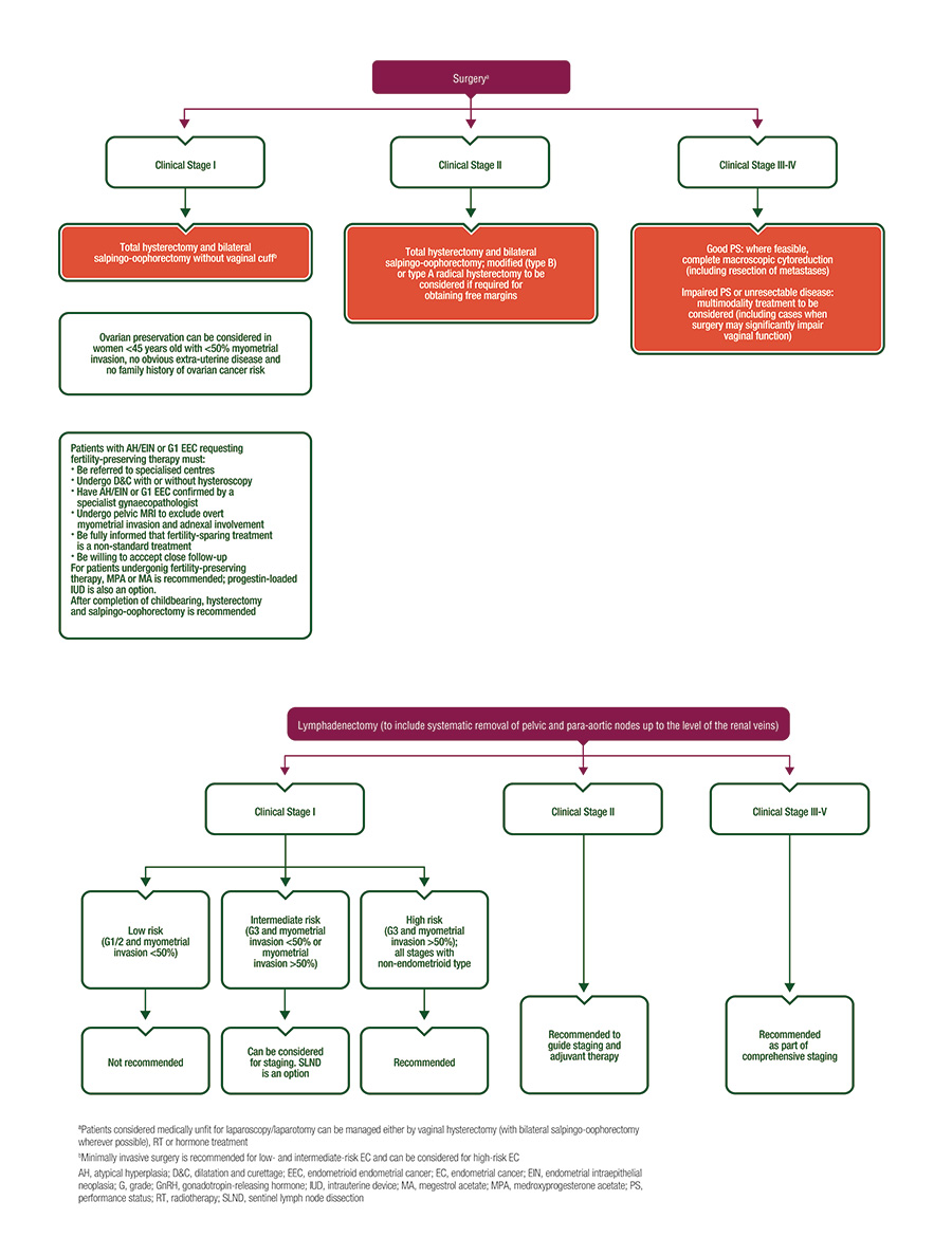 medium resolution of endometrial cancer algorithms surgical management algorithms