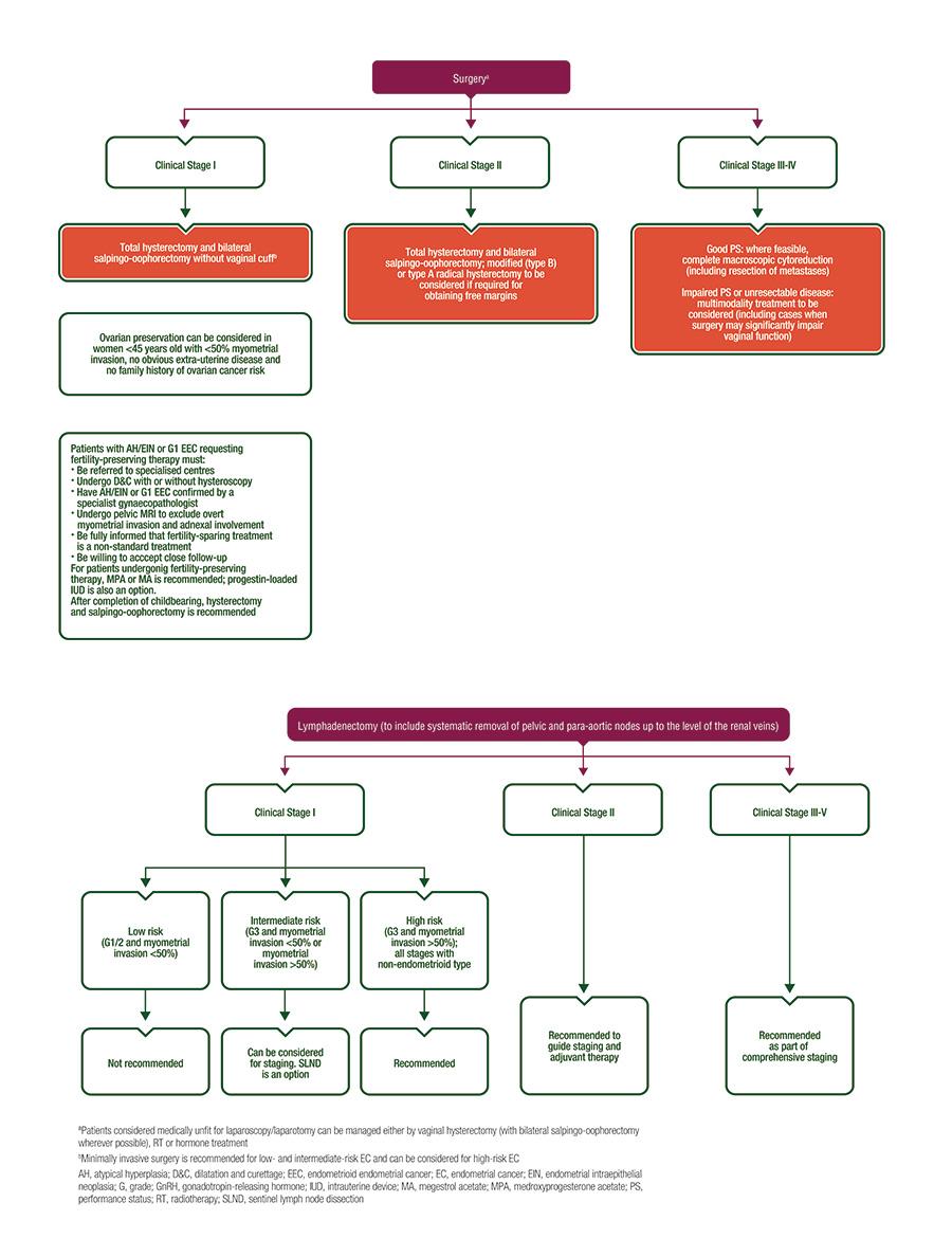 hight resolution of endometrial cancer algorithms surgical management algorithms
