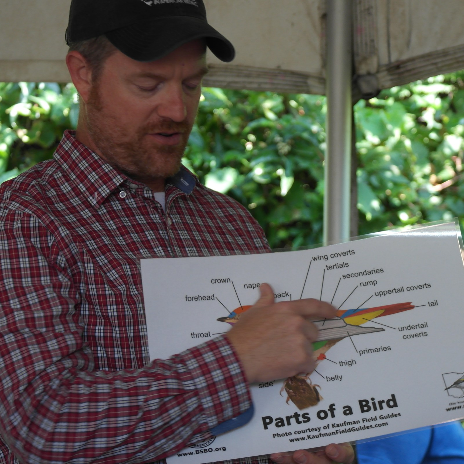 Jason Guerard showing the basic anatomy of a bird (Photo Credits: Chelsea Fisher)