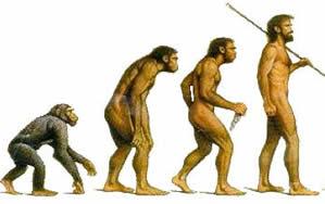 Graças a uma evolução gradual, hoje temos uma vida melhor que a dos nossos ancestrais.