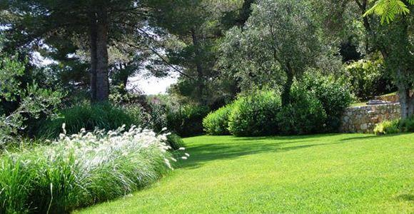 scarificateur le must pour votre pelouse espace jardin. Black Bedroom Furniture Sets. Home Design Ideas