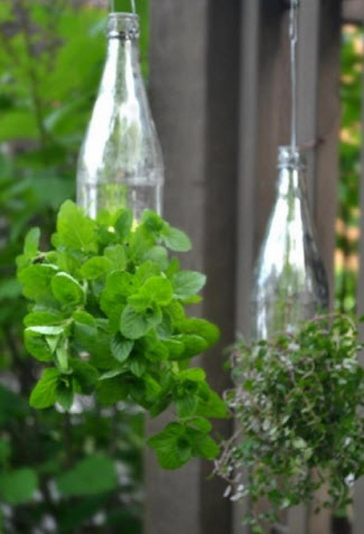 Elle utilise des fourchettes en plastique quelle plante dans son jardin  Une ide de gnie