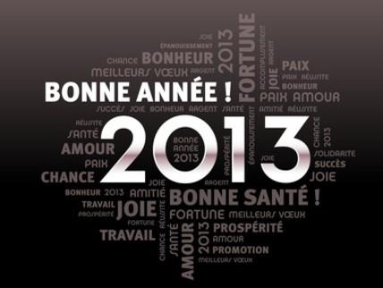 Très bonne année 2013 !