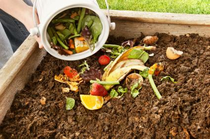 Pourquoi utiliser un bac à compost chez soi?