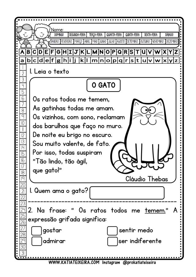Sequência de atividades O gato  3º ano