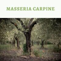 Masseria Carpine
