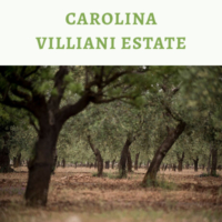 Carolina Villani