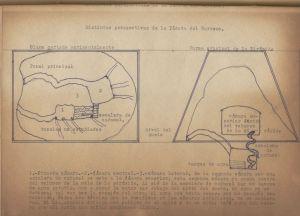 Croquis del interior de los túneles de El Barreno, inserto entre la página 42 y la 43.