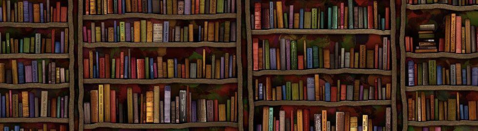 Esperanza library - panorama