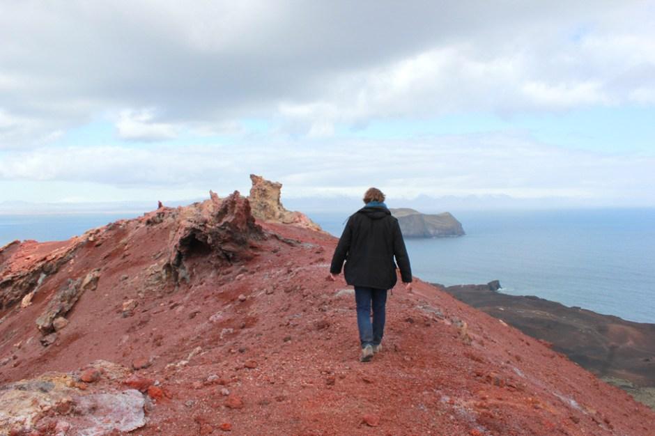 Île de Heimaey, Islande