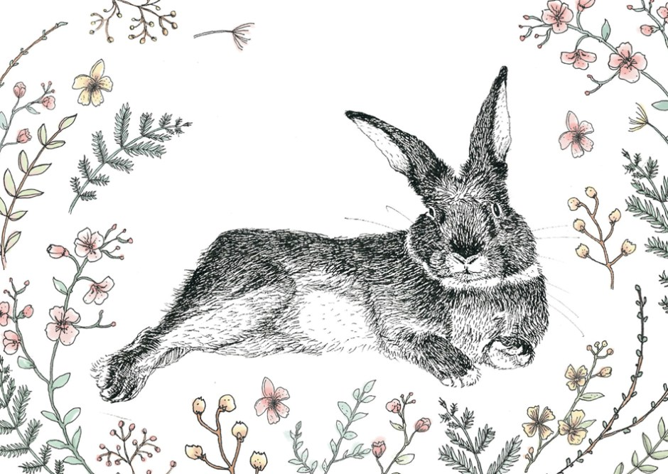 TiBoy, carte Esperluette, illustrée par elsa Briault