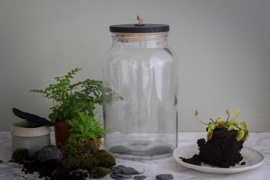 DIY terrarium fermé