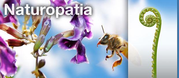 https://i0.wp.com/www.espiral108.net/wp-content/uploads/2011/03/16P_naturopatia.jpg