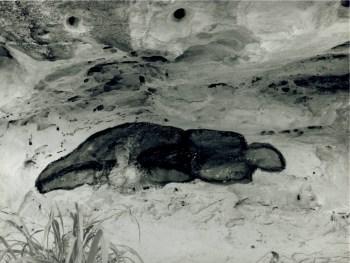 Ana Mendieta, Untitled (Varadero), 1981, fotografia in bianco e nero, stampa originale, cm 20.3 x 25.4 © The Estate of Ana Mendieta Collection Courtesy Galerie Lelong, New York