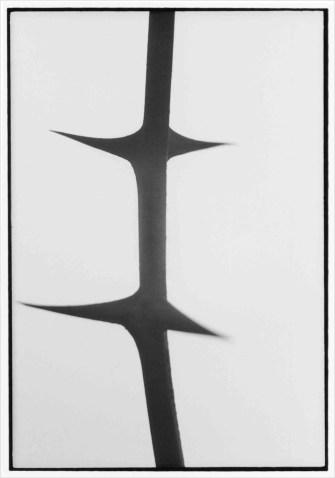 Pino Colla, Serie BIANCO – NERO, 1967- 1963, cm 40X28