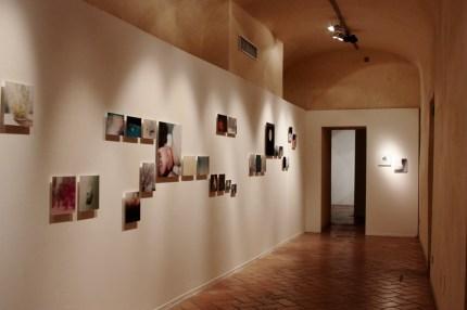 Fotografia Europea 2013, Palazzo Casotti, Rinko Kawauchi, foto Mariangela D'Avino