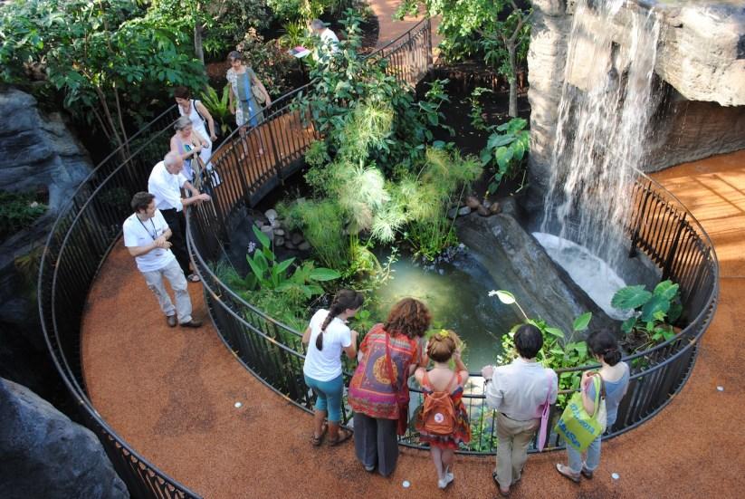 Inaugurazione del MUSE - Museo delle scienze, Trento, la serra tropicale. Foto: Albarello