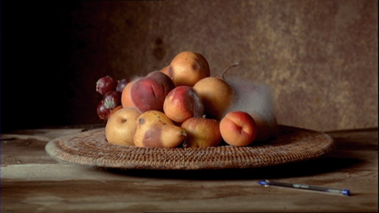 Sam Taylor-Wood, Still Life, 2001