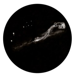 Enzo Cucchi, Cosmogonia III, 2013,cm 190 Ø, arazzo,cuciture in cotone e lana, tasca in cotone, quadricromia su canvas hahnemuhle 340 gr. Courtesy Galleria Poggiali e Forconi