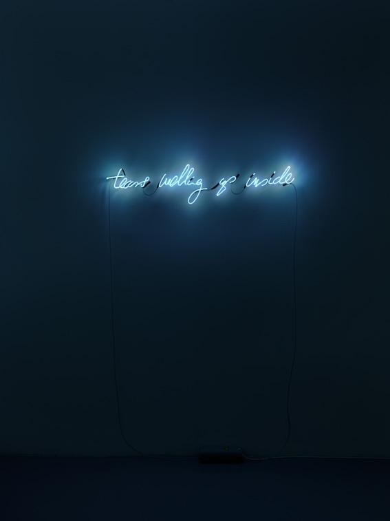 John Isaacs, The Architecture of Empathy, 2014, impianto di neon e vetro, trasformatori, 114x24x6 cm, edizione 2 di 4 Courtesy Galleria Massimo Minini, Brescia