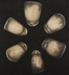 Omar Galliani, dalle serie Denti, 2009, matita nera su tavola, 200x185 cm
