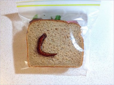 David Laferriere, sandwich bag