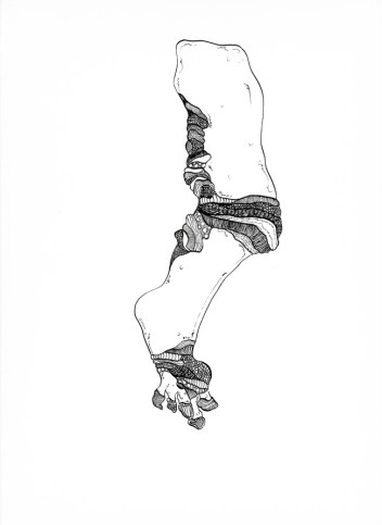 Andrea Guerzoni, Fram-01, cm. 42x29.5, china su carta, 2014