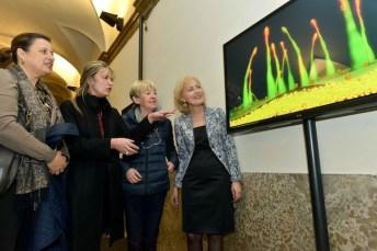 Nature Multiple. Le metamorfosi di Giuliana Cunéaz, inaugurazione 12 marzo, 2014, Museo Civico di Storia Naturale, Verona