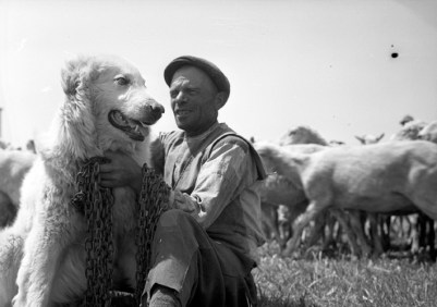 Federico Patellani, Puglia, 1947, Copyright: autori e Museo di Fotografia Contemporanea