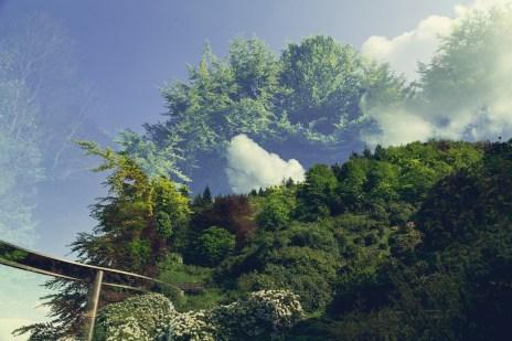 Dan Graham, Two Way Mirror / Hedge Arabesque, 2014 Photo Fondazione Zegna / Delfino Legnani (particolare)
