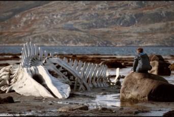 Un'immagine di Leviathan di Andrei Zviaguintsev