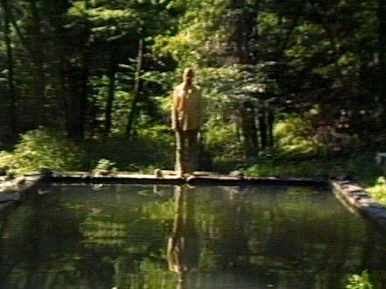 Bill Viola, the reflecting pool, color video, mono sound, 7 minutes